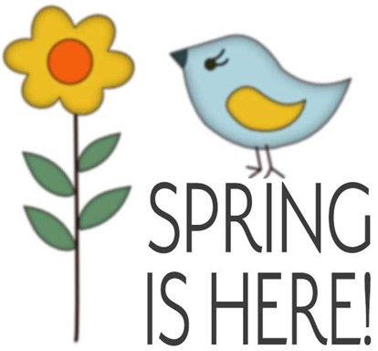 blue bird flower and spring is here text