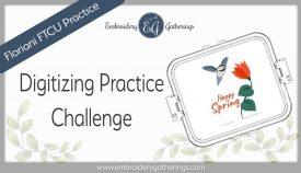 FTCU digitizing practice challenge-hummingbird image