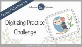 practice-2019-apr-wk5-spring-owl