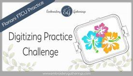 digitizing practice-hibiscus flower-FTCU practice