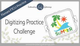 Floriani FTCU Digitizing practice-summer wave